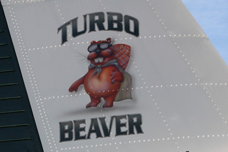 MKIII-Beaver-Paint
