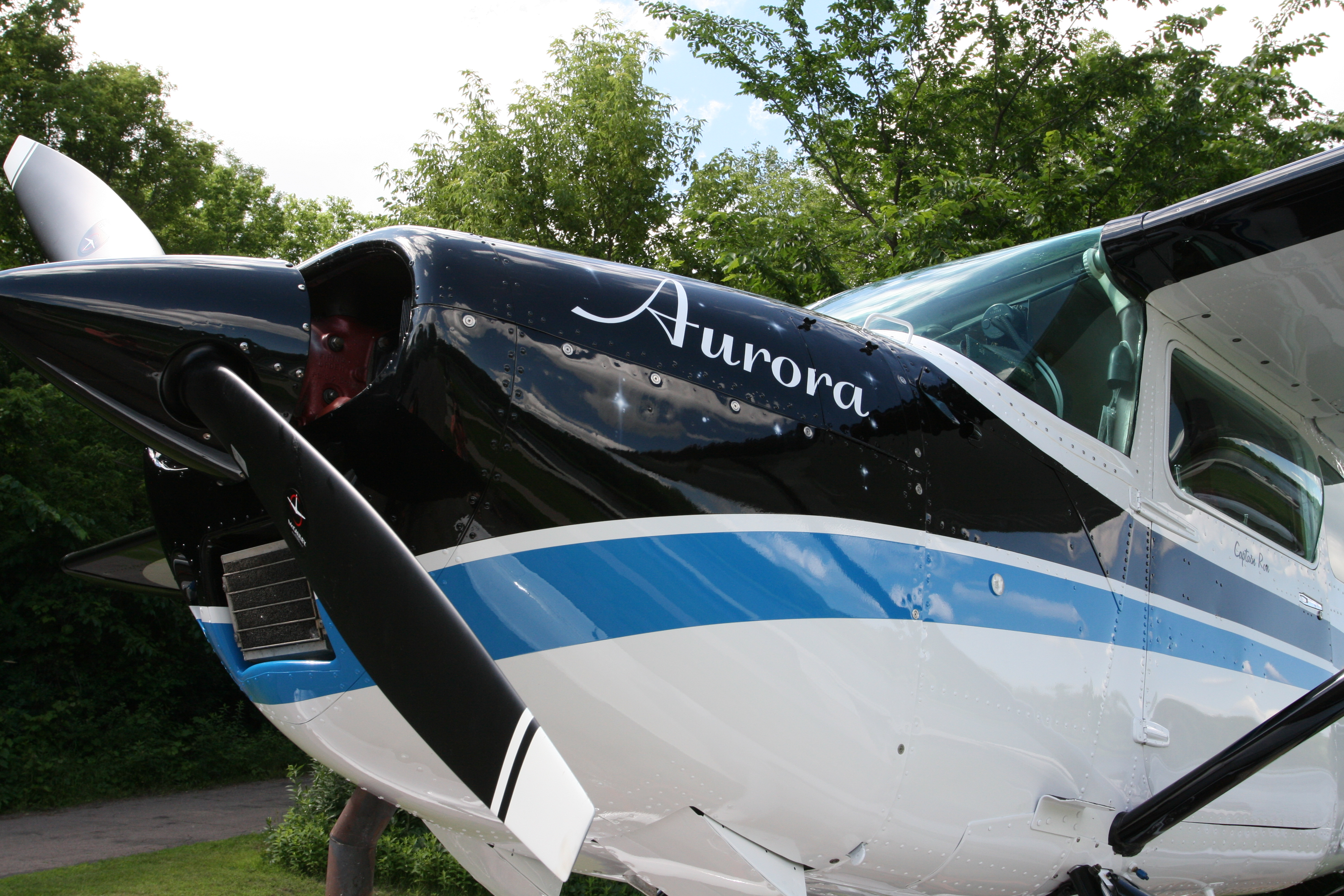 Cessna 180 With Paint by Wipaire